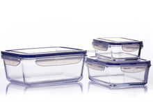 hot sale borosilicate glass eco friendly lunch box container