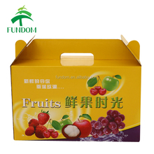 made in China most popular gift grape fruit packing corrugated carton box with handle