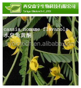 nature cassia nomame p.e , Best Quality Cassia Nomame Extract with 8% Dimer Flavan for Hair Beauty