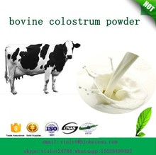 100% pure natural Bovine Colostrum in bulk supply with fast delivery!!!