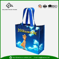 New Fashion China PP Woven Shopping Bag in CMYK Printing