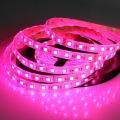 SMD 5050 Waterproof IP65 RGBW LED Strip