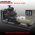 8-1500kw high capacity biogas generator hot selling