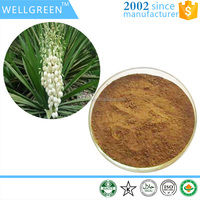 High quality pure natural plant extract Yucca Extract yucconin 50% 60%