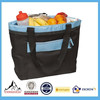 Large Insulated Lunch Soft Bottle Tote Box