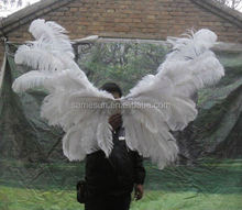ostrich large feather wings