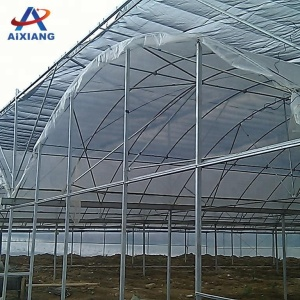 Chinese production mushroom plastic greenhouse