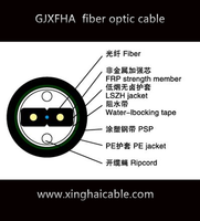 ODM or OEM GJXFHA ftth Dow-type drop cable for duct