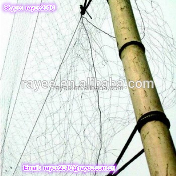 0.12MM*18MM*18MM Monofilament bird nets for catching birds(Real Manufacture), net paloma