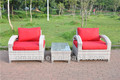 In 2016 the new comfortable rattan sofa set easy garden shop 3 pcs small sofa set