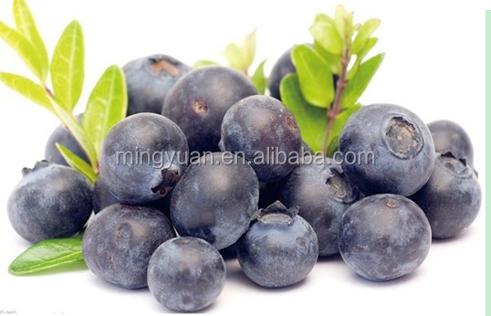 bilberry extract powder 84082-34-8
