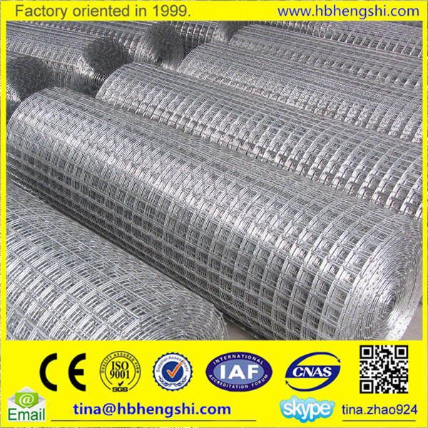 High quality low-carbon 1/4 inch galvanized welded wire mesh