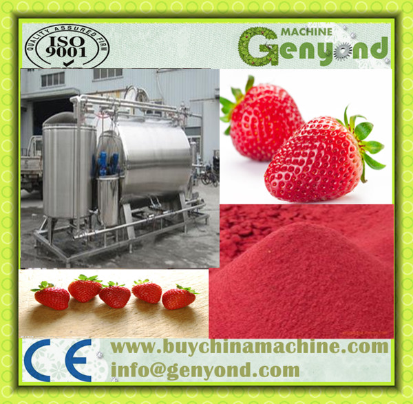 Advanced Freeze Dried Instant Strawberry Powder Making Machine Productionline JYDFSB-004 Natural Strawberry Powder Machinery