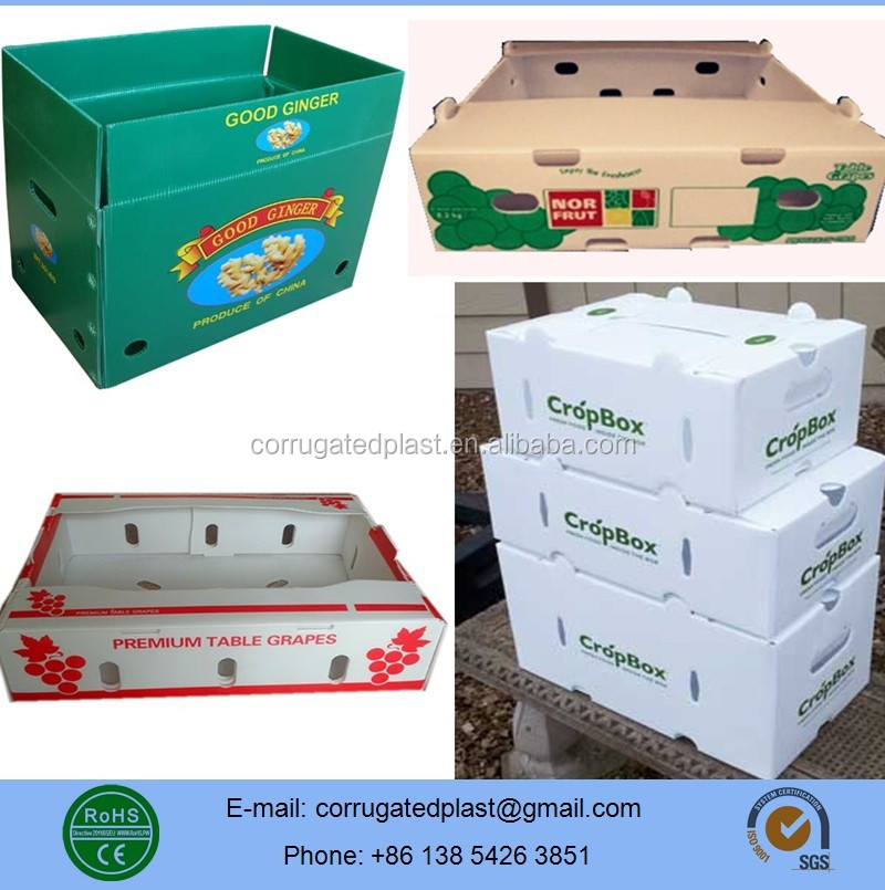 Corrugated Plastic Box Fruit and Vegetables Plastic Container