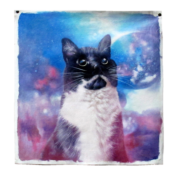 Pet Cat Portrait Painting From Photographs