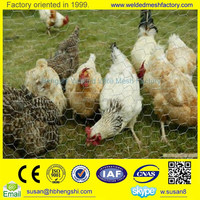(Manufacturer) Galvanized/PVC coated chicken coop hexagonal wire mesh netting