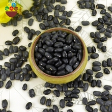 Chinese high quality bulk price of black kidney beans