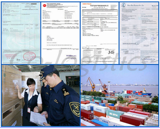 ulk charter ocean freight from China ship by sea freight , LCL, FCL-----Ben(skype:colsales31)