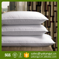 China Supplier Hotel Custom Down Pillow Manufacturer