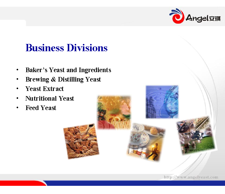 Angel Active Dry Wine Yeast BV818 for fruit wine