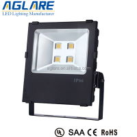 30000 Lumens 250w Led Floodlight Led