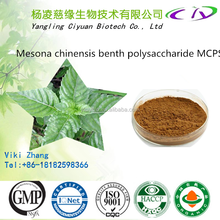 Purity Mesona Chinensis extract/ Grass jelly Leaves Extract powder 5:1 10:1 20:1