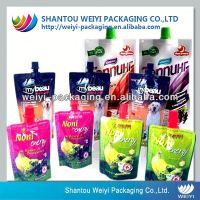 Manual fill washing liquid bag with plastic spout