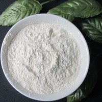 new crop natural onion flavor dehydrated Nature white onion powder