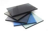 tinted glass/tea color tinted glass/grey tinted tempered glass