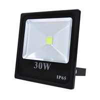 cob waterproof ip65 30watt Super Slim Design flood led light for outdoor use