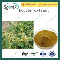Natural Hot sale Chinese Dodder Seed Extract,High quality Chinese Dodder Seed Extract powder