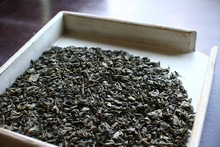 GP Gunpowder green tea 9375