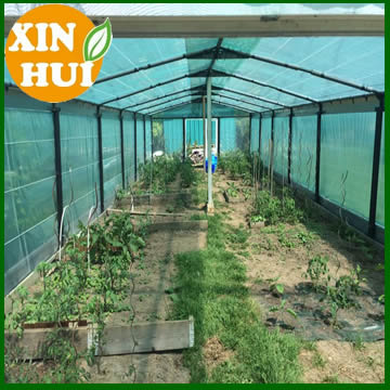 Vegetable greenhouse shade net for nursery