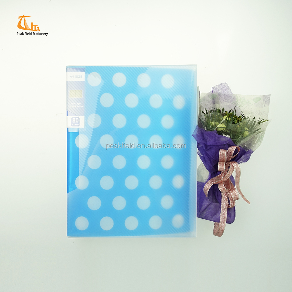 OEM school stationery fancy pp soft cover a4 size two layer clear book plastic file box