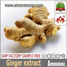 Supercritical Fluid Less faber watersoluble For liquid ginger extract for beverage