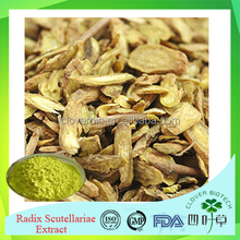hot selling 100% pure Radix Scutellariae extract in bulk