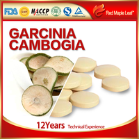 Chinese Magic Slimming Weight Loss Garcinia Cambogia Pills Tablets