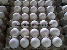 Bulk Eggs for Iran Market