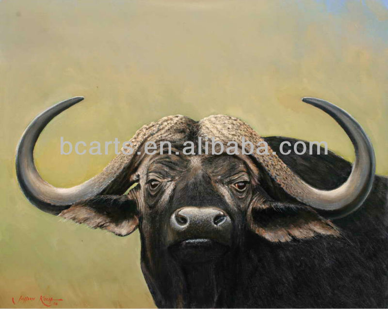 Old Water Buffalo Face Oil Painting