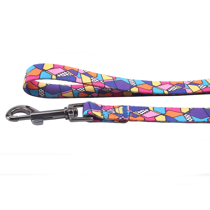 Competitive price and many colors polyester attractive pet leash