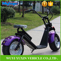 2017new 1000w 60V 2 wheel electric citycoco scooter YXEB-717S