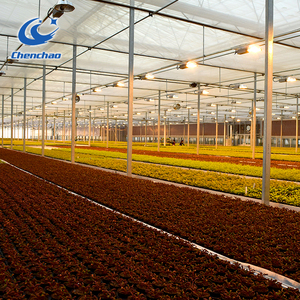 Greenhouse Hydroponic Ebb and Flow Bench Systems (stationary or rolling)