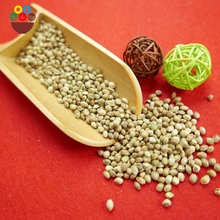 Chinese natural style agricultural hemp seeds wholesale