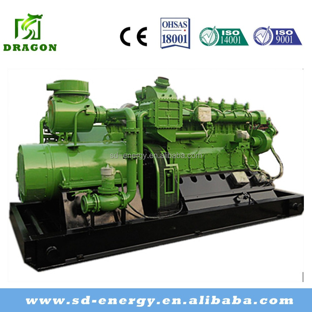 CE Standard 1MW Biomass Generator Set or Electric Power Plant with Wooden Plant Container