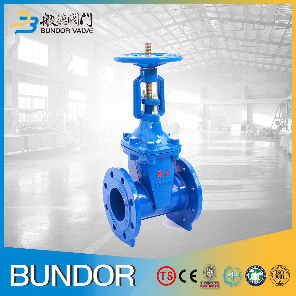 Class300 Rising Stem Cast Iron 6 Inch Gate Valve