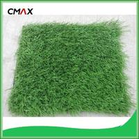 grass in rolls prices capim dourado golden grass