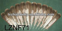Turkey Wing Quill feather pens LZNF71