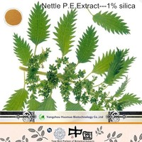 high quality nettle extract Organic Silica 3% in large store