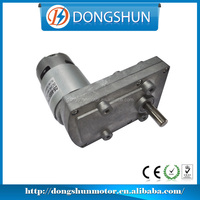 Experienced Manufacturer High Effeciancy 6v DC 95mm DS-95SS775 small low rpm dc motor