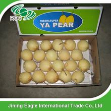 Chinese supplier fresh sweet juicy yali pear